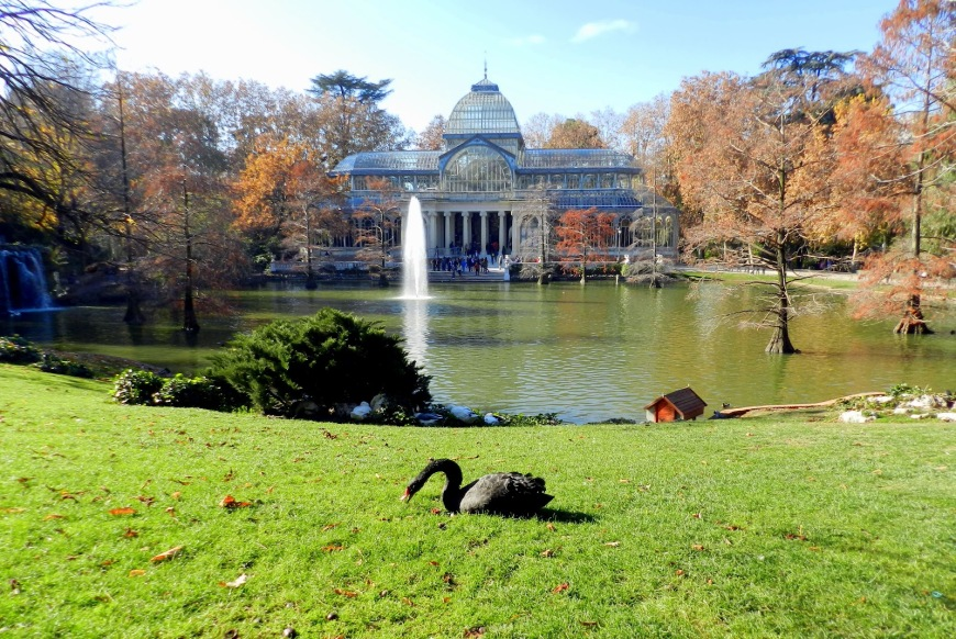 Strolling Through Parque del Retiro, Madrid