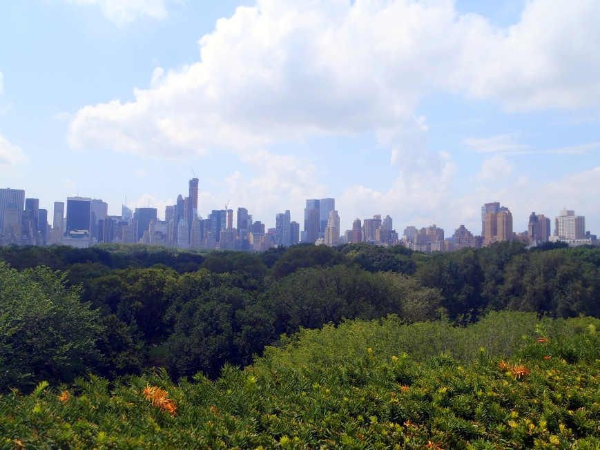 Manhattan Skyline from the top fo the Met